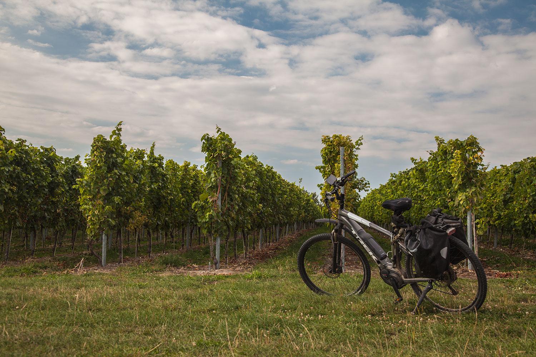 Mosa-ebike-tours-bikes-netherlands-nederland-Geul-Valkenburg-Fromberg-2018